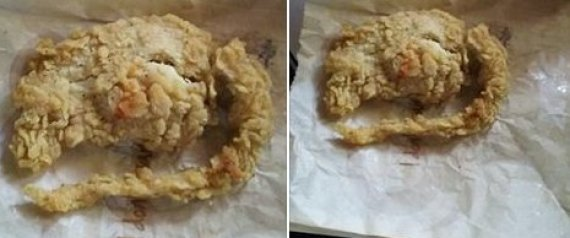 n-KFC-FRIED-RAT-HOAX-large570